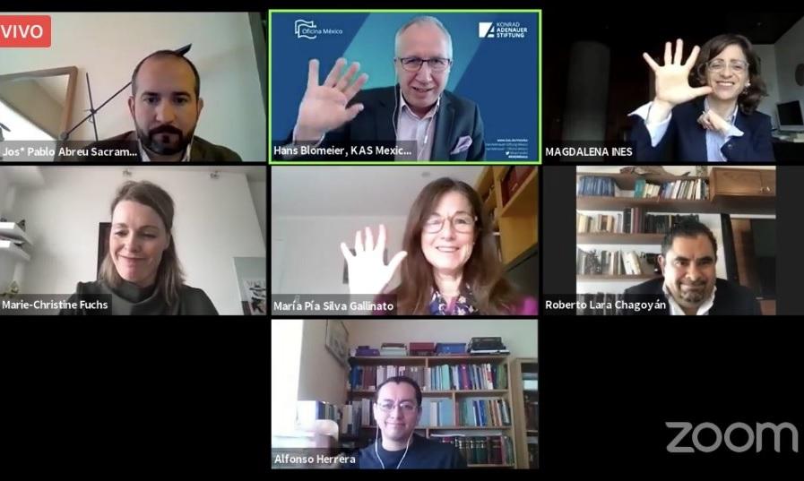 Ministra María Pía Silva expone en reunión virtual sobre Acceso a la justicia constitucional en Chile durante la pandemia